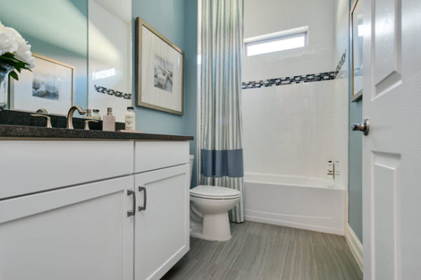 Big Tile or Little Tile? How to Design for Small Bathrooms ...